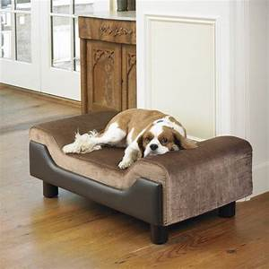 Pin by shamim rajabali on dog beds that look like for Dog beds that look like furniture