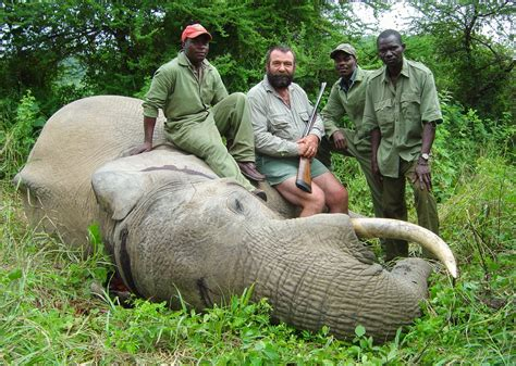 trophy hunting helping save african elephants