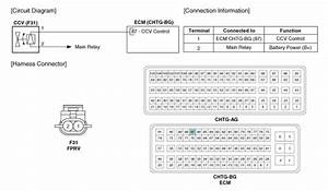 Kia Optima  Canister Close Valve  Ccv   Schematic Diagrams