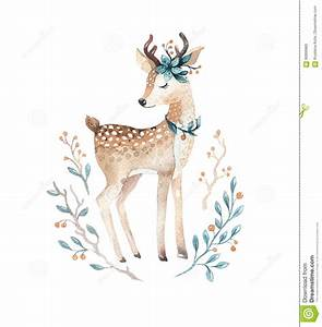 Cute Baby Deer Animal For Kindergarten, Nursery Isolated ...