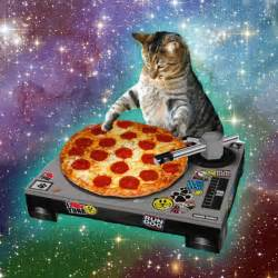 cat pizza pizza cat gifs caterville