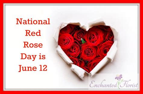happy national red rose day