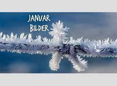 Bildergalerie JanuarBilder Winterstimmung per WhatsApp