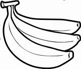 Banana Clipart Drawing Bananas Sketch Coloring Pages Template Drawings Paintingvalley Webstockreview sketch template