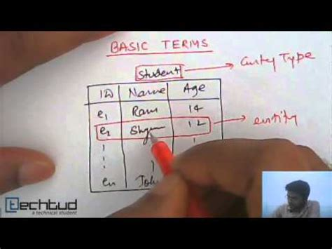 entity entity type entity set  management
