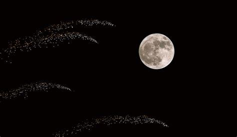 Последние твиты от ケイン・ヤリスギ「♂」 (@kein_yarisugi). スーパームーンと夜祭り花火 | SKYWARD+ スカイワードプラス