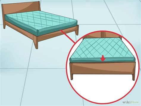 pet animal how to fix a squeaking bed frame