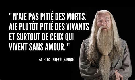 un fait l amour dans la cuisine top 10 des meilleures citations de dumbledore le