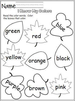 colors leaves  images preschool colors