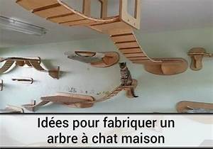 Arbre à Chat Fait Maison : comment faire un arbre a chat fait maison chaton arbre a chat maison fabriquer arbre a chat ~ Melissatoandfro.com Idées de Décoration