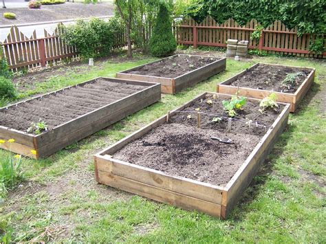 Raised Garden Bed by Wood For Raised Beds A Practical Way Of Gardening Homesfeed