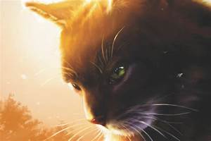 The Warrior Cat Movie Discussion Page – BlogClan