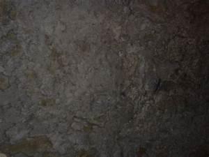 Mammoth Cave Texture 5 | MyFolio