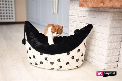 divanetti per gatti cucce per gatti da interno come scegliere la migliore