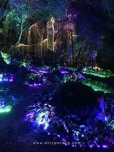 Paradise in Penang Avatar Secret Garden - OnlyPenang com
