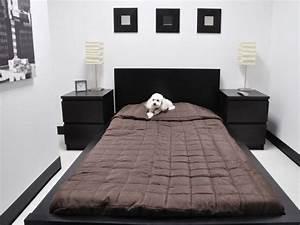 Hotel Pour Chien : 1 h tel de luxe destin aux chiens ~ Nature-et-papiers.com Idées de Décoration