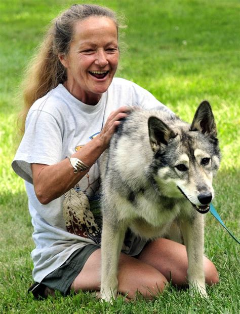 Maine's Wolf Hybrids Dogged By Questions  Central Maine