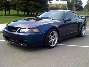 2004 mystichrome cobra for sale | Mustang Forums at StangNet