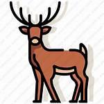 Deer Icon Illustrazione Cervi Dei Premium Linecolor