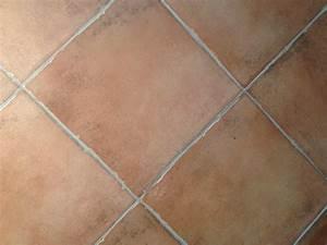 pavimento effetto cotto per interno Bertolani Store