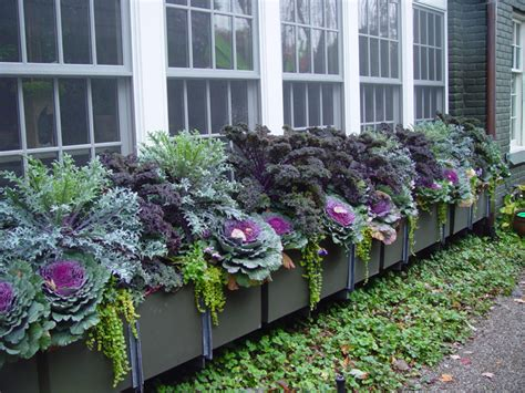 Blumenkästen Bepflanzen Ideen by Balkonk 228 Sten Bepflanzen Ideen Und Beispiele F 252 R Sonnige