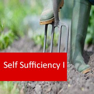 sufficiency  ass cld   permaculture