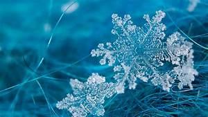 Snowflake Desktop Wallpaper - Wallpaper, High Definition ...