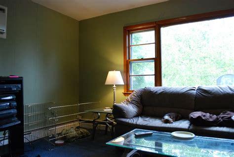homeimprovements wishimayphotography