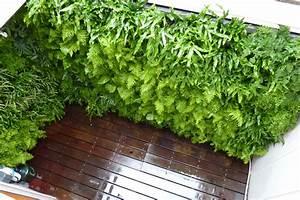Plants On Walls vertical garden systems: Custom Designed ...