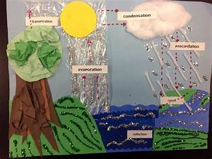 Water Cycle Project  U2026