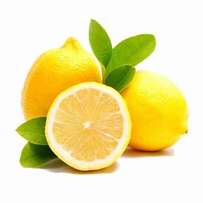 Lemon Transparent Purepng Library