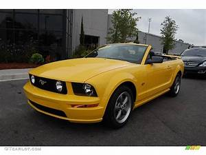 2005 Screaming Yellow Ford Mustang GT Deluxe Convertible #19367352 Photo #15 | GTCarLot.com ...