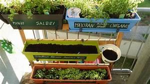 Vertikaler Garten Selber Bauen : vertikaler garten cheap download vertikaler garten stockbild bild von immergrn ppig with ~ Indierocktalk.com Haus und Dekorationen