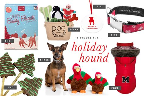 holiday gift guide for pets for the holiday hound