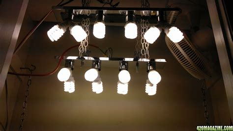 build cfl grow light fixture lighting designs