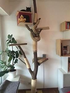 More For Cats Kratzbaum : kratzbaum mit liebe selbst gemacht cat trees pinterest cat tree and cat ~ Whattoseeinmadrid.com Haus und Dekorationen