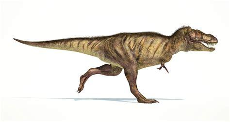 rexs tiny arms    vicious weapons