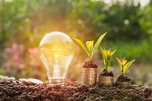 Edf Energie Verte : acciones sustentables enfocadas a cuidar el medio ambiente ~ Medecine-chirurgie-esthetiques.com Avis de Voitures