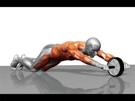 siken power exercise wheel ab wheel rollout tutorial