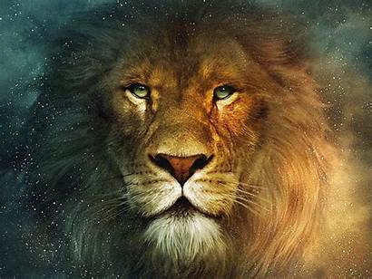 Narnia Wallpapers Leon Aslan Lion Background Chronicles