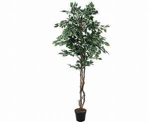 Ficus Benjamini Kaufen : silber ficus benjamini kunstbaum mit 240cm online kaufen ~ A.2002-acura-tl-radio.info Haus und Dekorationen