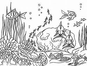 Comment Dessiner La Mer : coloriage fonds marins marguerite le bouteiller ~ Dallasstarsshop.com Idées de Décoration