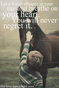 Simple Horse Qu... Horse Owning Quotes