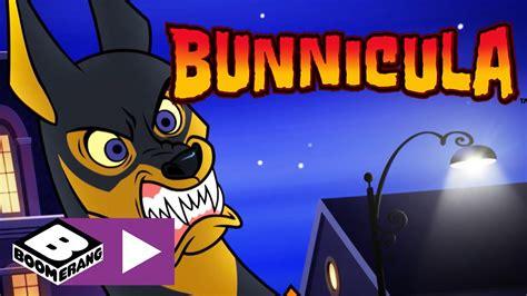 bunnicula fluffy war journal boomerang uk youtube