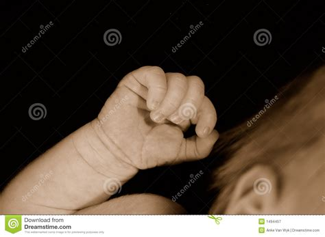 Clenched Hand Of Newborn Baby Royalty Free Stock