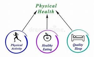Diagram Of Physical Health Stock Illustration