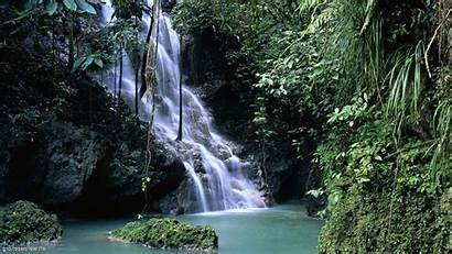 Nature Screensavers Wallpapers Screensaver Wallpapersafari 11jpg