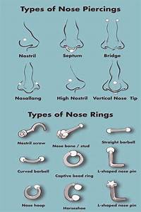Types Of Nose Piercings Types Of Nose Rings Info Graphic