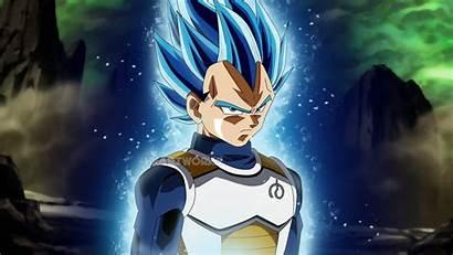 Vegeta Form Goku Royal Saiyan Dragon Ball
