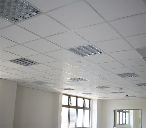 T243325 Suspended Ceiling Grid Long Range Suspended